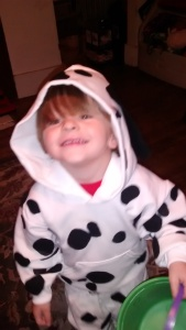 My Little Dalmation