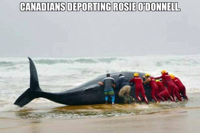 Rosie O'Donnell Being Deported